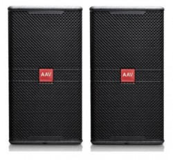 Loa karaoke bass 25cm AAV Smart 8010